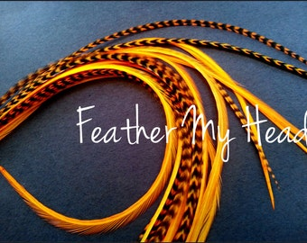 "Super Long 11""-14""  Feather Hair Extension, Whiting Eurohackle, Orange, 6 Piece (3 Grizzly / 3 Solid)"