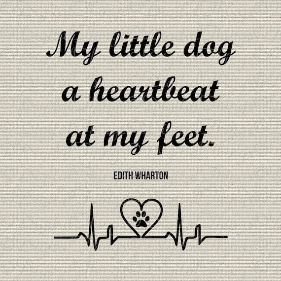 Image result for edith wharton quotes a dog
