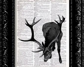 Black Forest Deer Vintage Dictionary Print Vintage Book Print Page Art Upcycled Vintage Book Art