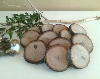"""100 (3"""")  Wood tree slices - Coasters -  Rustic wedding decor - Table numbers - Save the date - diy projects - Craft supplies"""