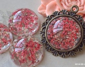 20 mm Round Shape Ruby red and white Dried Flowers Flat Back Resin Cabochons (.hm)
