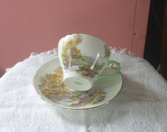 Shelley Tea Cup and Saucer
