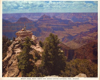 Grand Canyon Arizona Union Pacific Railroad Colorphoto Print from the 1950s