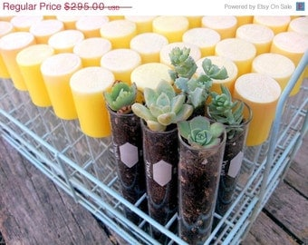 Vintage Test Tubes Wedding Favors with Rack