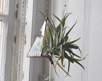 Hanging Aer Glass Terrarium -- for air plant terrarium -- stained glass -- prism -- terrarium supplies -- eco friendly