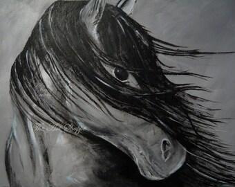 Black and White Horse Print-8x10