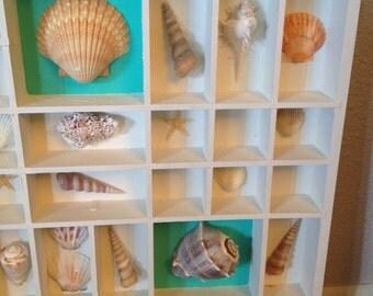 Printers Tray Shadow Box Seashells White