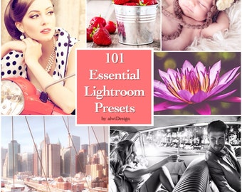 101 Essential Lightroom Presets INSTANT DOWNLOAD for Wedding, Portrait, Nature, Fashion, Art, Holiday, Baby or Product Photographs