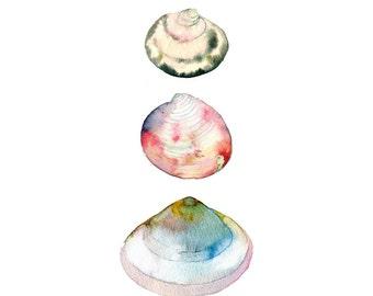 Sea Shells Watercolor Print.  Coastal Art.  Beach Decor.