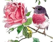 ACEO Limited Edition 8/25- Little rose robin and roses, art print of an ORIGINAL ACEO watercolor by Anna, Gift idea for housewarming party
