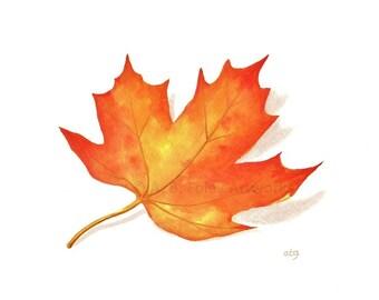 Fall Leaf Print - Fine Art Reproduction of Original Watercolor Maple Leaf Illustration, Simple Autumn Art, Minimalist Nature Art 8.5X11