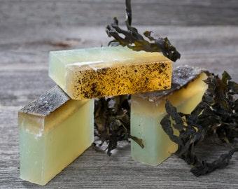 Irish Sea Soap - Sea Soap - Handcrafted Glycerin Soap with Kelp and Sea Salt - Handmade Glycerin Soap - Homemade Soap