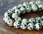 Dalmatian Jasper Beads, 10mm Round - 15.5 inch Strand - eGR-JA002-10