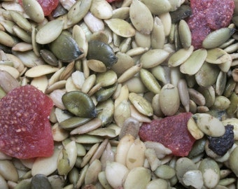 Pepitas Roasted Salted with Dried Strawberries  Micro Batch 1 Pound Bag