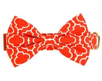 Red Dog Bow Tie Collar: Crimson Lattice