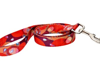 Ruby Harvest Fashion Dog Leash - 5ft. Made From Recycled Webbing