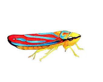"Colorful Bug art print of an original drawing available 5x7"" or 8x10"""