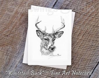 Wildlife Note Cards - Animal Note Cards - Whitetail Buck Note Cards - Whitetail Deer Print - Wildlife Print - Wildlife Stationary