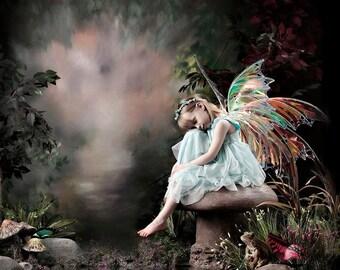 Custom order for Large Fairy wings