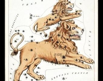 LEO July August  Constellation ZODIAC Star Chart ASTRONOMY Astrology Digitally Remastered Fine Art Print / Poster