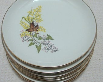 Taylor Smith & Taylor Leaf o'Gold Pattern - Set of 4  Bread and Butter Plates (2 Sets Available) - Versatile Shape with Gold Trim