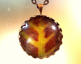 Real Pressed Leaf Round Rustic Antiqued Copper Necklace Glass Autumn Pendant