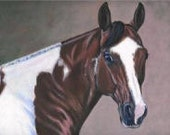 HORSE PORTRAIT-- acrylic painting on 11x14 stretched canvas- free shipping