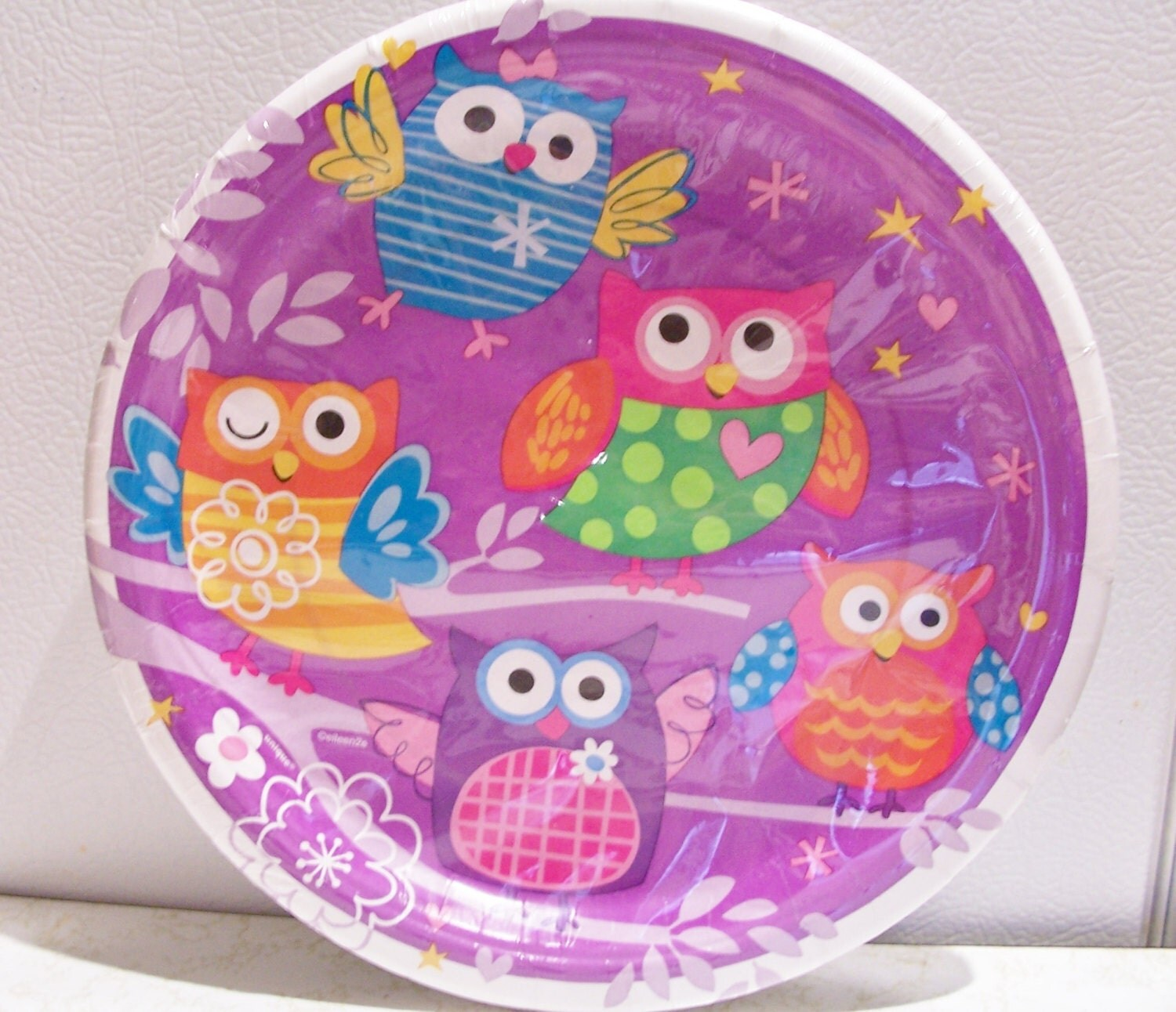 Set of 10 owl themed paper plates birthday party supplies