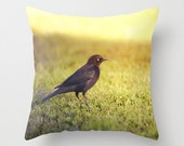 Bird Pillow - Sunset Pillow - Bird Photography - Animal Pillow - Goth Pillow - Black Bird Photo Pillow - 16x16 18x18 20x20 Pillow Cover