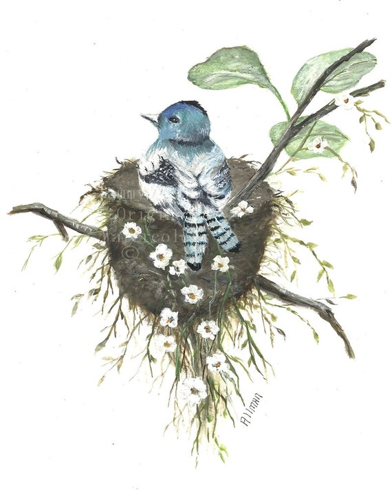 "Original Watercolor Painting Archival Print,"" Protecting the Nest"" Bluebird  Watercolor, Bird Nest Watercolor,"