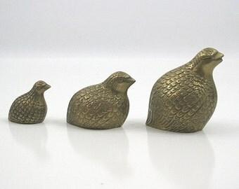 Brass Quail Family