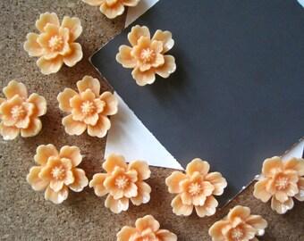 Pretty Flower Thumbtacks 12 pcs Orange Sherbet Sakura Flower Thumbtacks..  Housewarming Gifts, Hostess Gifts, Wedding Favors