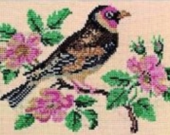 Dover Needlework Anne Orr's Charted Designs Counted Cross Stitch Pattern Book Charted Design Needlepoint Folk Art Alphabets Cabbage Rose