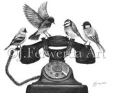 Pencil Drawing Print - Four Calling Birds - Day 346