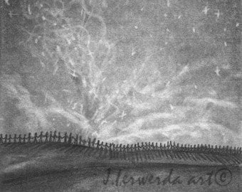 Pencil Drawing Print - Fond Of The Stars - Day 247