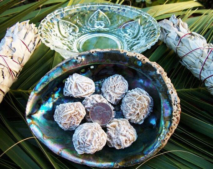 Desert (Selenite) Rose ~ 1 Reiki infused rough stone