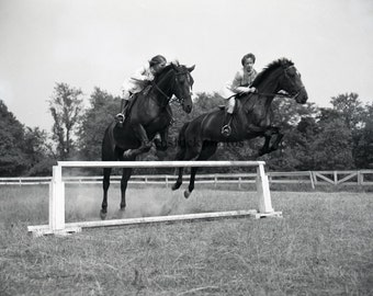 """vintage photo """"horse jumping 1953"""" SS-011; equestrian photo; black and white"""