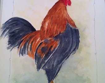 Rooster - watercolor