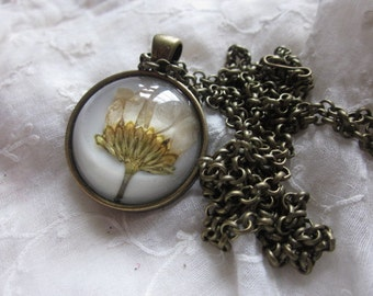 Antique Bronze Necklace Beige Chrysanthenum Dried Flower Cabochon Pendant, Handmade,