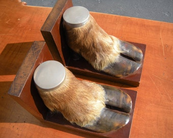 Taxidermy Hoof Bookends(Pair)