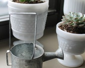 Small Vintage Rustic Metal Water Can Canister great for Planting succulents