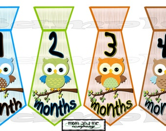 PRECUT 12 Onepiece TIE Stickers Monthly Stickers Baby Age Stickers Baby Boy Necktie owl birds Infant month decals month Baby Stickers set