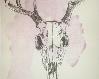 Animal Skull Print