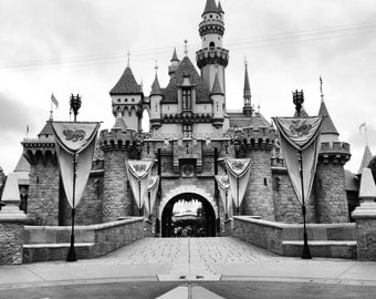 Disneyland Sleeping Beauty's Castle Still Life (D2)
