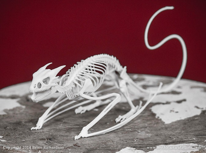 Horned Wyvern Dragon Skeleton 3D Print Taxidermy