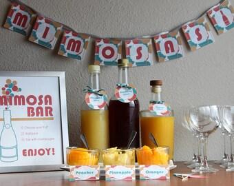 DIY Mimosa Bar Party Set
