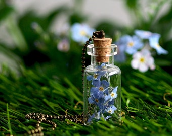 Forget-me-not flowers dry flower necklace - kt020