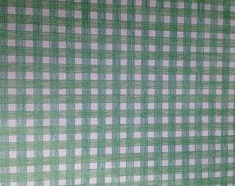 12x12 Okie Dokie Press Dew Drop Green Paper