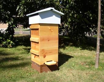 "Bee Hive Beehives ""bee hive"""