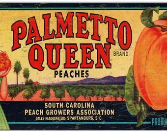 Nostalgic Palmetto Queen Brand Peaches Label  Art RG939